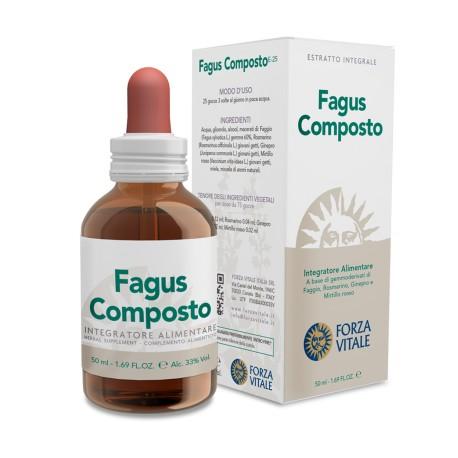 FAGUS COMPOSTO