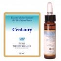 Centauty